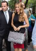 Sofia Vergara con la Chanel Rigid Handle Flap Satchel