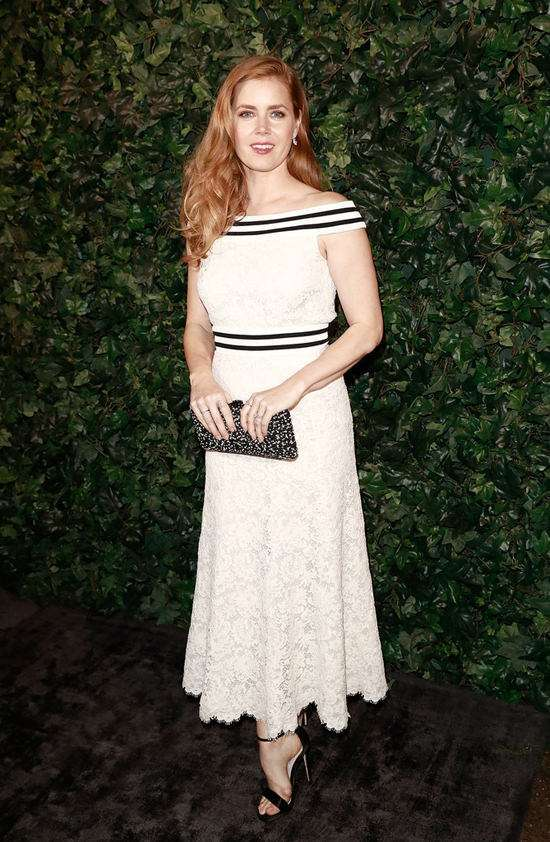 Look di Amy Adams
